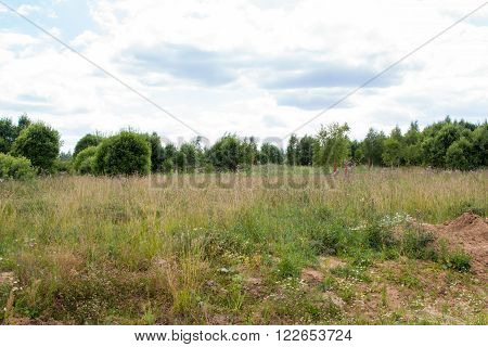 Field Overgrown With Weeds And Forest