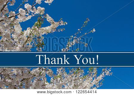 Thank You Message A tree in full bloom with blue sky and text Thank You