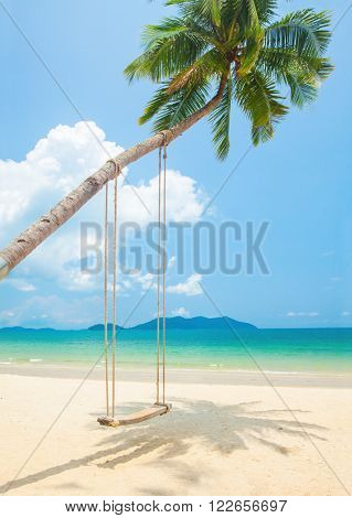 beach with coconut palm trees and swing