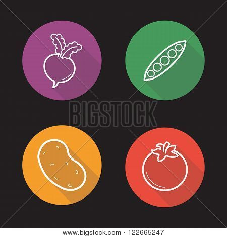 Vegetables flat linear icons set. Turnip, pea pod, potato and tomato symbols. Long shadow outline logo concepts. Vector line art illustrations