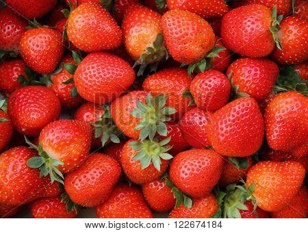 strawberry background