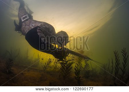 Man with speargun diving on the breath hold in the fresh water lake
