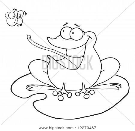 Outlined Frog Catching Fly