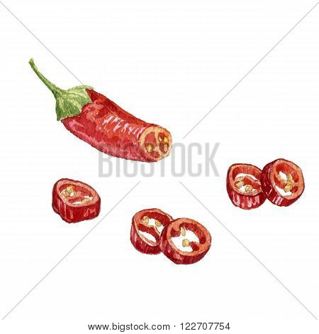 vector watercolor red chili peppers, two whole chili and half pepper at white background, hand drawn artistic illustration