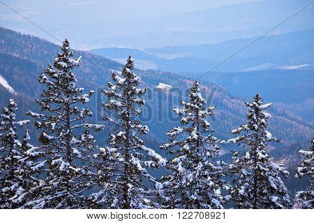 View from Klippitztorl peak in Alps view alpine trees Carinthia Austria