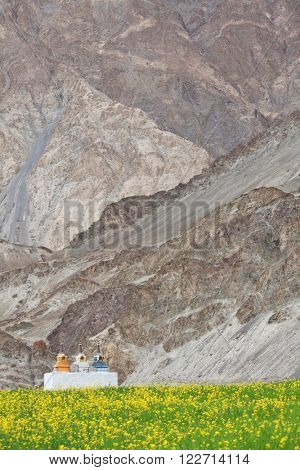 Stupas in the Himalayas (Buddhistic symbol) - Zanskar, Ladakh