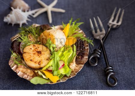 Fresh seared sea scallops salad with mango radish avocado on scallop shell