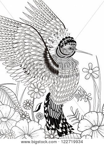 lovely hummingbird coloring page in exquisite line