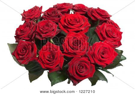 Bouquet Of Fifteen Purple Roses Isolated With Clipping Path