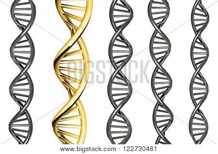 DNA gold outstanding from silver DNA, isolated on white background, 3d rendered