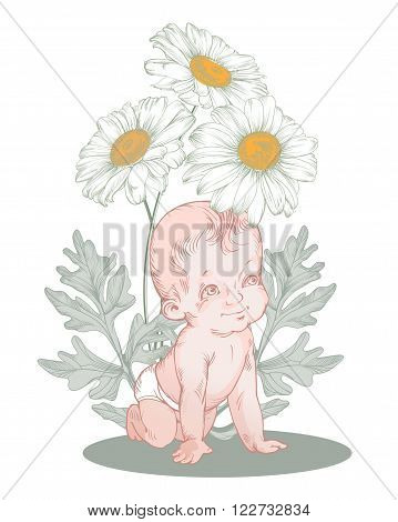 Image of adorable baby under the camomiles  for on vintage greeting card