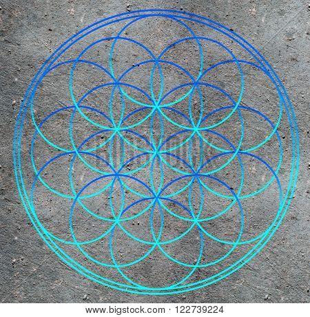 Flower of life , sacred geometry - symbol harmony and balance