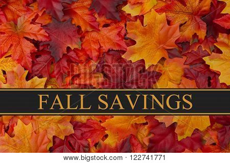 Fall Savings Message, Fall Leaves Background and text Fall Savings
