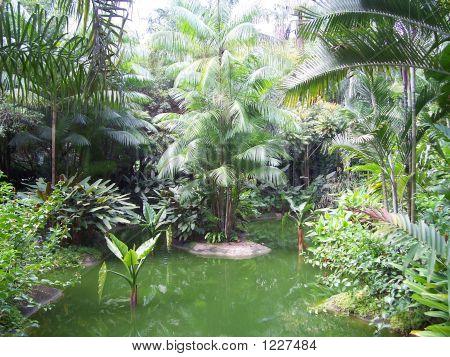 Botanical Gardens In Singapore