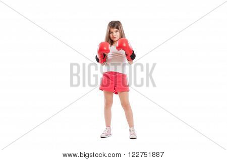 Young Adorable And Cute Boxer Girl