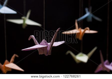 Origami Crane colored paper on a black background