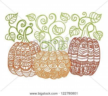 hand drawn pumpkins with swirl leaves zentangle style
