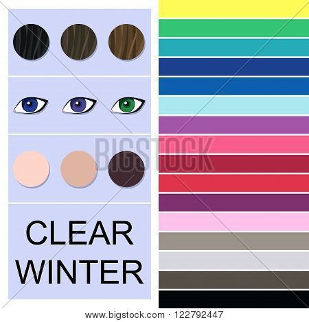 Stock vector seasonal color analysis palette for clear winter type. Type of female appearance
