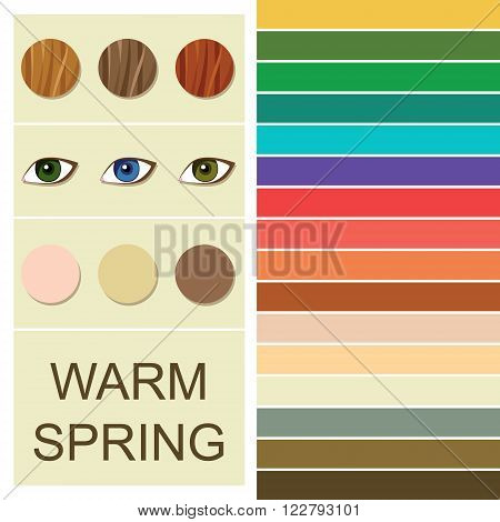 Stock vector seasonal color analysis palette for warm spring type. Type of female appearance
