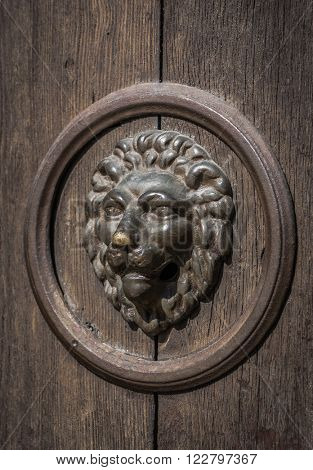 lion head on the door, black and white