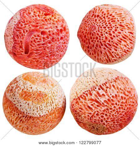 Four Balls From Orange Sponge Coral Gemstone