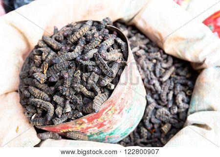 Smoked silkworm, market in Bobo-Dioulasso, Burkina Faso