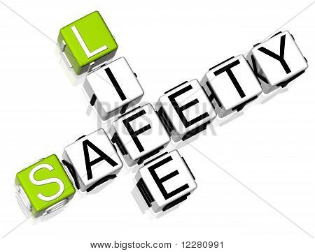 Safety Life Crossword