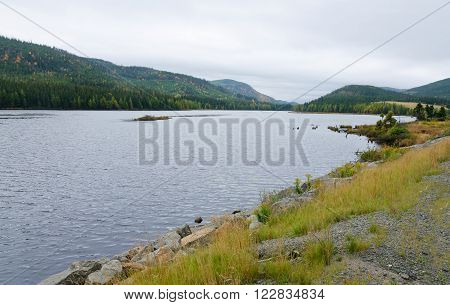 Lake In Overcast Day