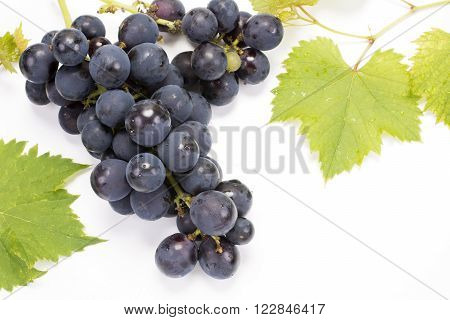 A bunch of grape and leaves on a white background