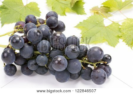 A bunch of grape in front of leaves on a white background