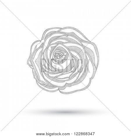 Abstract floral background. Vector flower rose. Element for design.