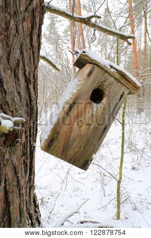 handmade starling-house in winter forest