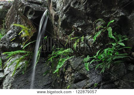 J C Slaughter Falls is a cascade waterfall located near Mt Coot-tha in Brisbane, Queensland, Australia