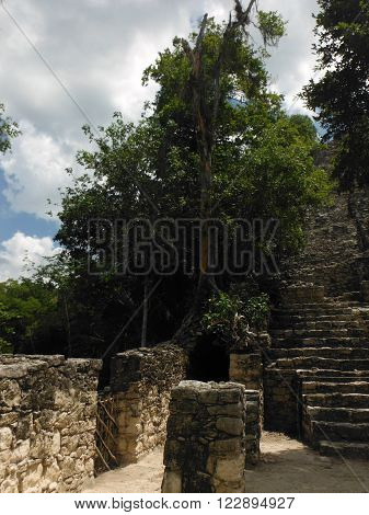 An ancient and high Mayan staircase to a pyramid barely restored in a forest at the Coba site in Mexico.