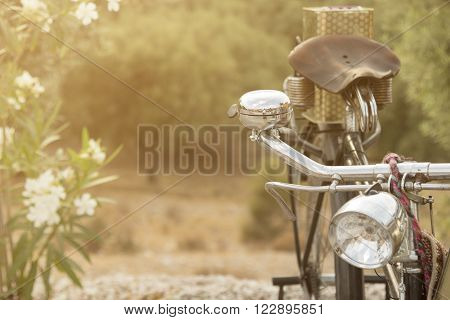 Old bicycle handle bar close up and white flowers