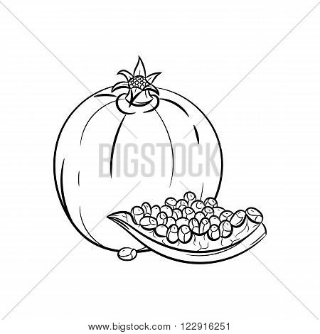 Garnet. Vector hand drawn garnet illustration isolated on white background - stock vector
