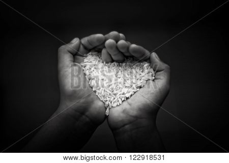 Black and whiteHands holding rice.selective focus and shallow depth of field.