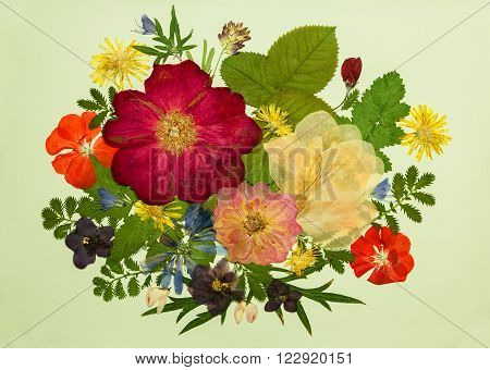 A bouquet of flowers on a light background. Pressed dried rosehip flowers gladiolus geranium violet dandelion clover and lupine. Picture from dry flowers.