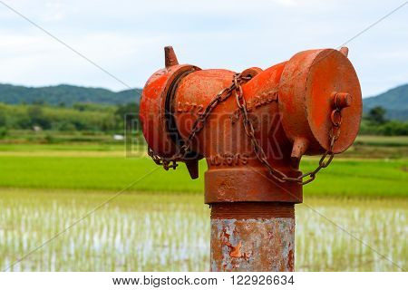 A weathered red fire hydrant (emergency water supply) near a paddy field.