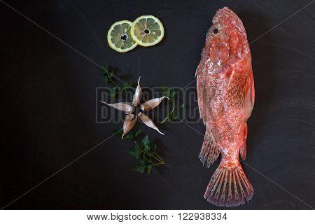 Red Scorpionfish Lemon Garlic