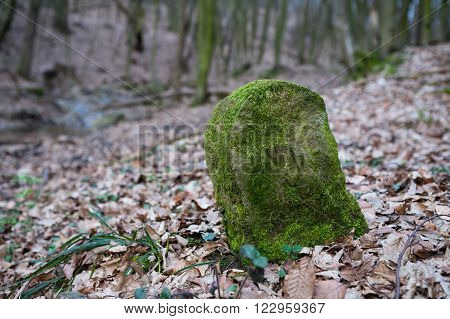 An old boundary stone overgrown with moss in deep forest
