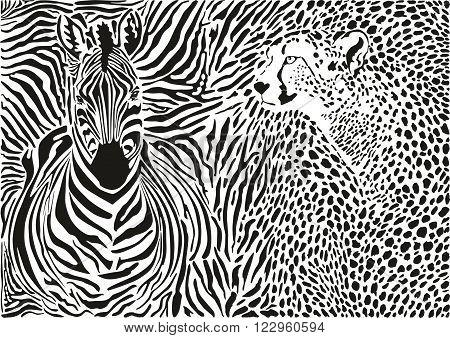 vector illustration pattern background cheetah and zebra skins