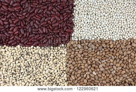 Dried beans clockwise from top left Red Kidney beans also known as Red Giant, Harricot or Navy beans, Pinto beans and Black Eyed beans also called Black Eyed peas.