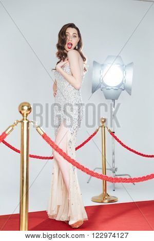 Charming woman posing on red carpet