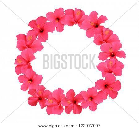 Hibiscus flower wreath isolated on white background