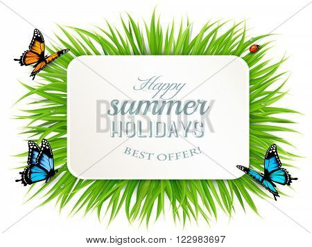 Happy summer holidays banner with grass, butterflies and ladybird. Vector.. Vector.