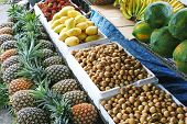 Philippine Fruits