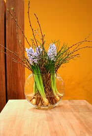 picture of flower vase  - first plants of spring in wooden interior - JPG