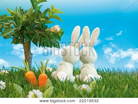 zwei Oster-Bunnys sitzen auf einer Wiese neben einem Baum, der Blick in den blauen Himmel