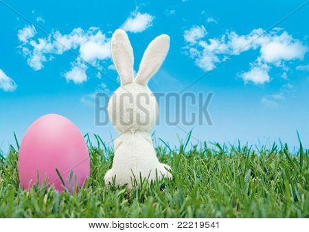 easter-bunny with coloured egg sitting in a meadow